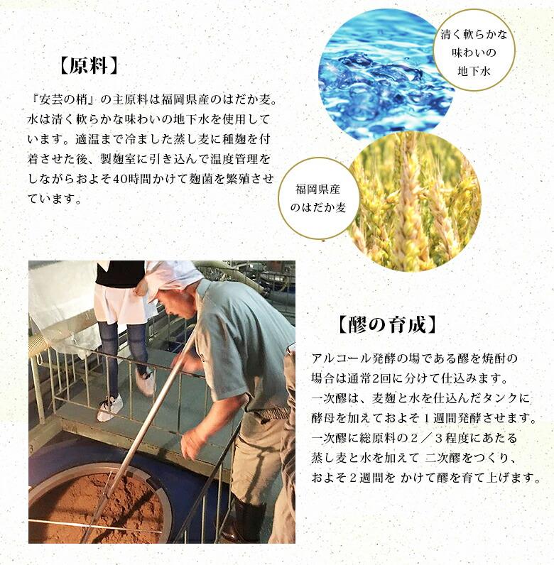 『安芸の梢』の主原料は福岡県産のはだか麦。