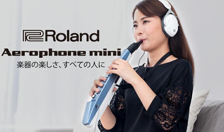 Roland AE-01 Aerophone mini ウィンドシンセサイザー