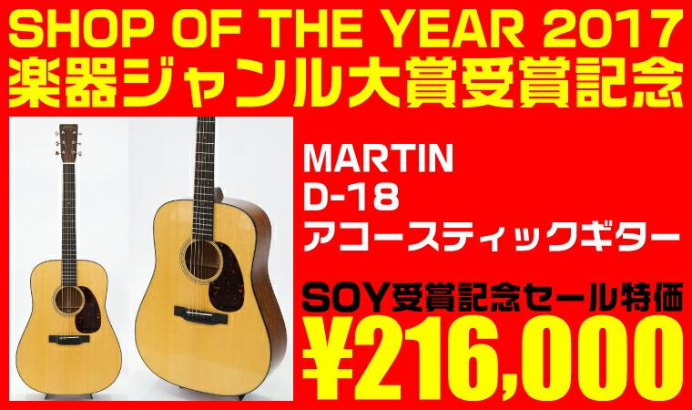 MARTIN D-18 アコースティックギター