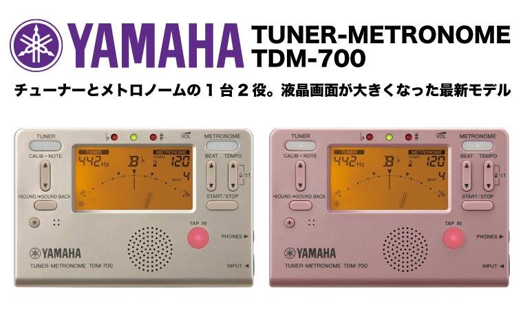 YAMAHA TDM700 チューナー
