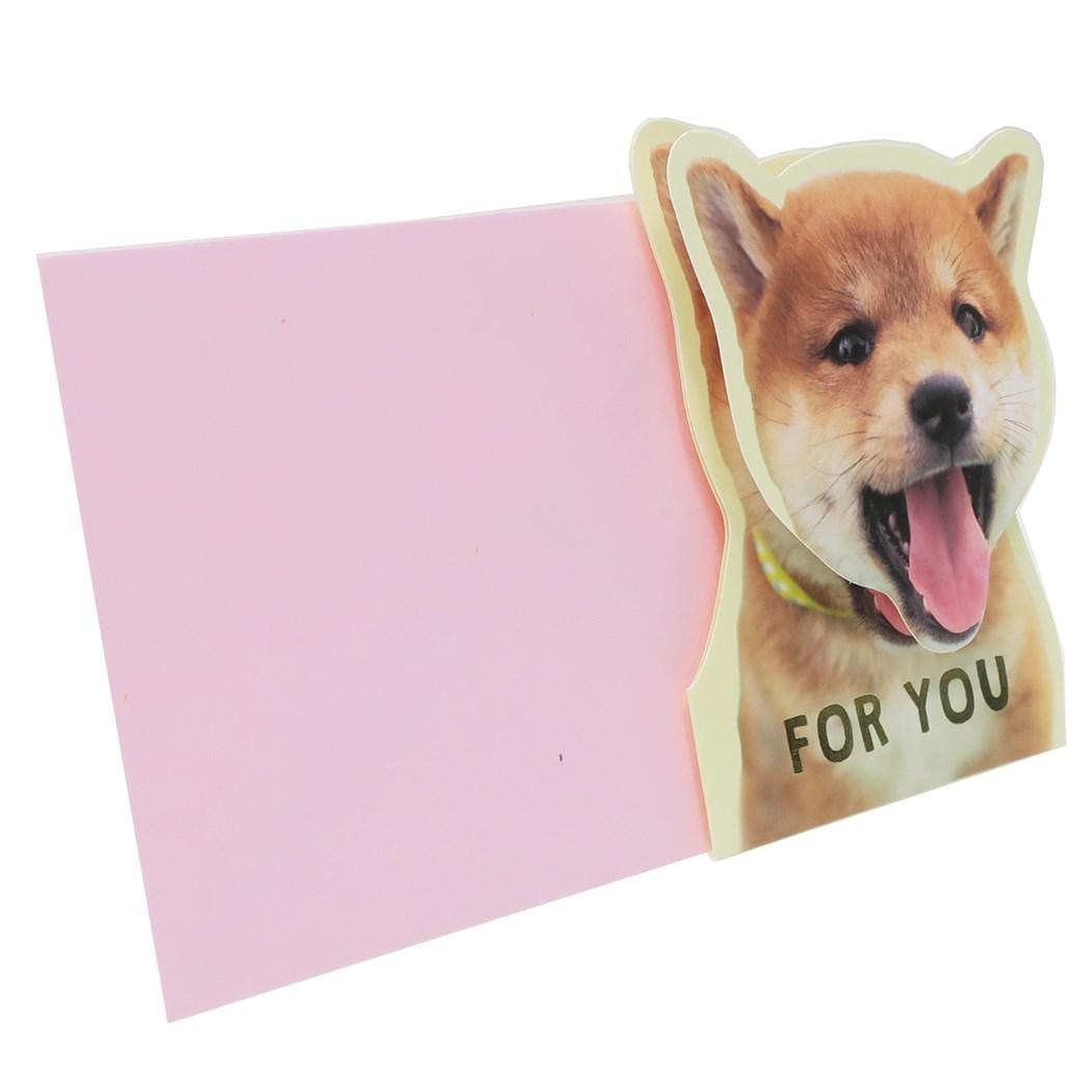 いぬねこ メッセージカード