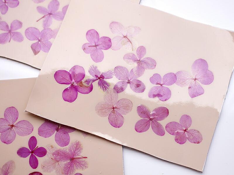 紫陽花の押し花レザー