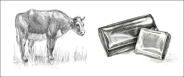 エーテル 牛革の種類・ランク・種類別の見分け方・特徴<