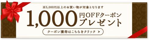 【初めての方限定】楽天市場で使える1,000円分ポイント!