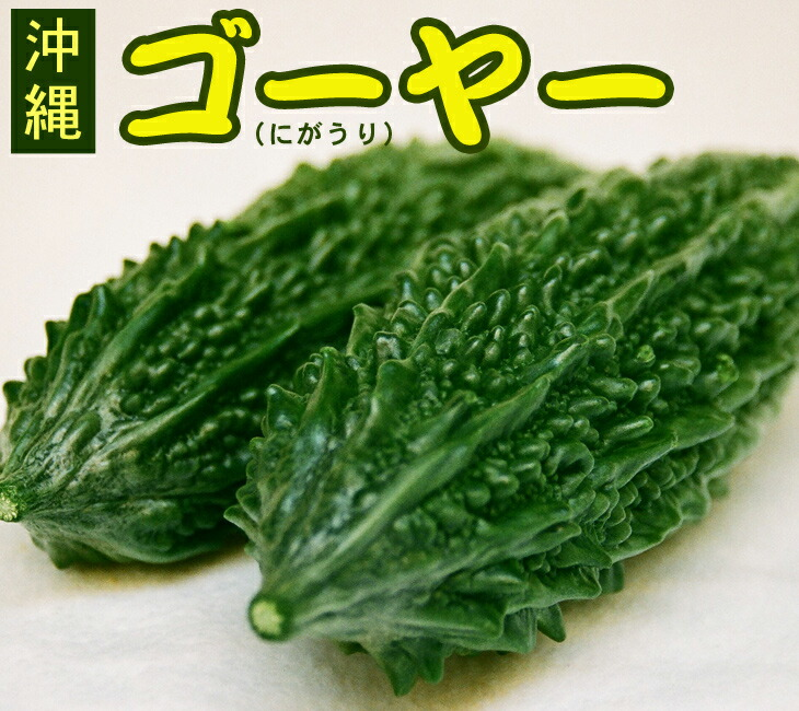 沖縄産ゴーヤー