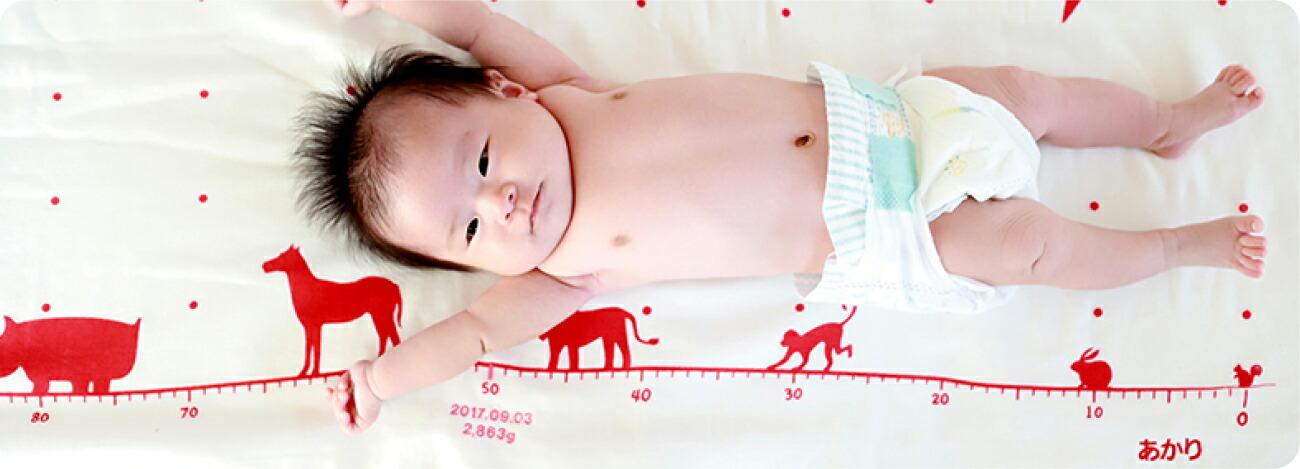赤ちゃんの成長が一目瞭然。お名前や生年月日、出生時身長・体重刺繍無料です。