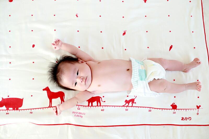 赤ちゃんの成長が一目瞭然 身長計付き
