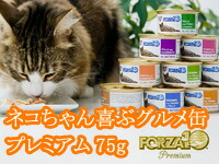 フォルツァ10 プレミアム缶詰