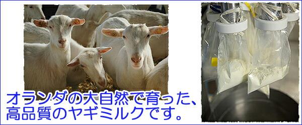 ミルク本舗ヤギミルク