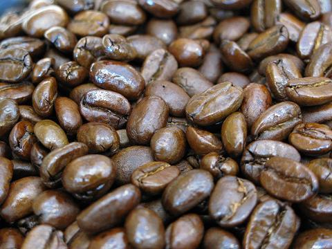 コクと酸味のバランスがほど良く森林やハーブのような香り!■インドネシア・スマトラ・マンデリンG1スペシャル■中深煎り(フルシティロースト)