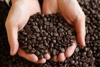 今月のコーヒー