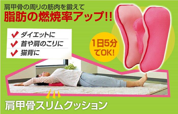 寝ながら肩甲骨スタイル枕(DVD付)