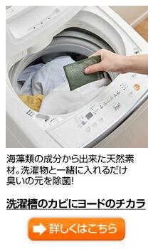 洗濯槽のカビにヨードのチカラ