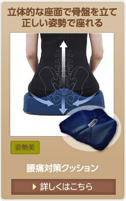 腰痛対策クッション