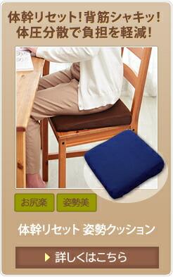 体幹リセット 姿勢クッション