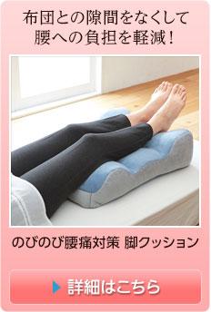 のびのび腰痛対策 脚クッション