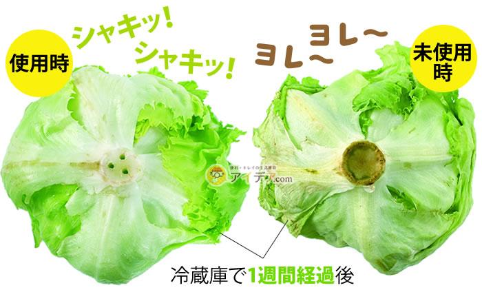 ベジシャキちゃん(2個組):使用例