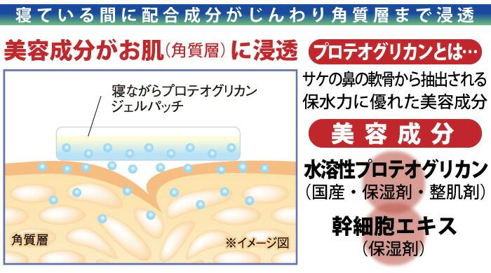 寝ながらプロテオグリカンジェルパッチ:寝ている間に配合成分がじんわり角質層まで浸透