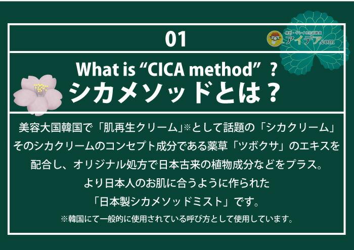 CICA method MIST:シカメソッドとは?