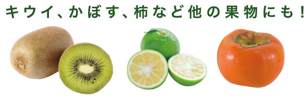 ベジシャキ オレちゃんレモちゃん:キウイ、かぼす、柿など他の果物にも