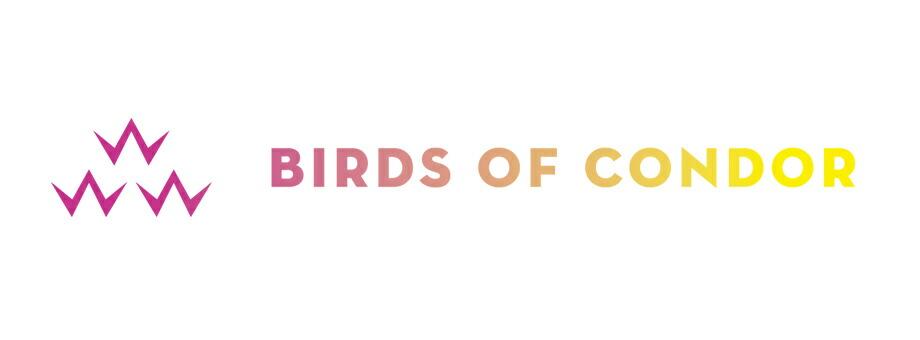 BIRDS OF CONDOR
