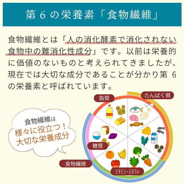 第6の栄養素「食物繊維」とは
