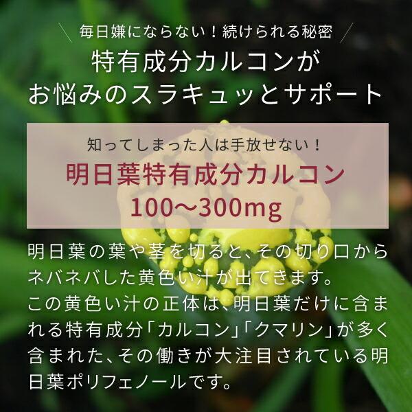 ニチエー明日葉青汁は特有成分カルコン含有