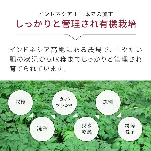 しっかりと管理され栽培ニチエーオーガニック明日葉青汁
