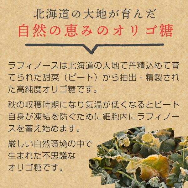 甜菜(ビート)から作られた高純度オリゴ糖ラフィノース