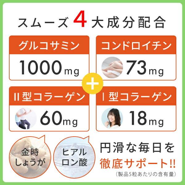 スムーズ4大成分グルコサミン、コンドロイチン、2型コラーゲン、1型コラーゲン配合のニチエーグルコサミン&コンドロイチン&2型コラーゲン