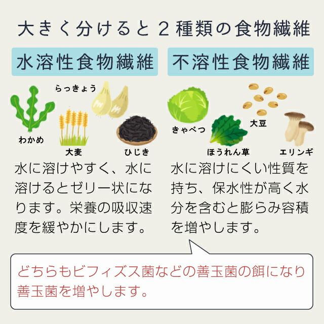 水溶性食物繊維と不溶性食物繊維