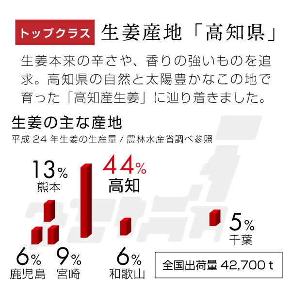 生姜産地トップクラスの高知県