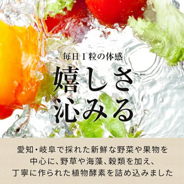 愛知、岐阜で摂れた新鮮な野菜や果物を使用して作られています。