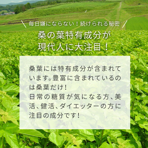 ニチエー桑の葉青汁はダイエッター大注目成分オーガニック桑の葉特有成分DNJ含有