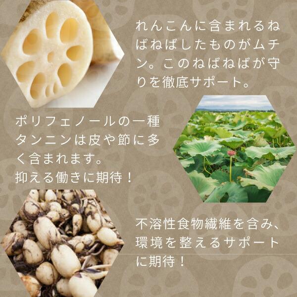 ニチエーれんこん100%パウダーに含まれるムチン、タンニン、不溶性食物繊維