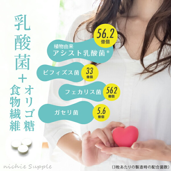 ニチエー乳酸菌+オリゴ糖+食物繊維サプリメント