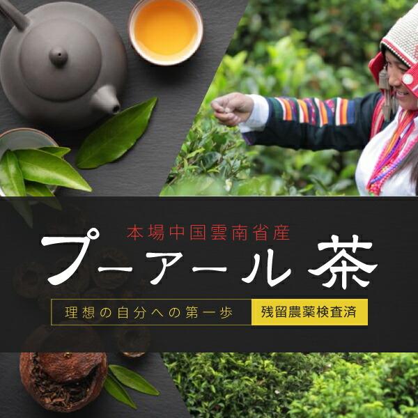 中国雲南省産プーアール茶