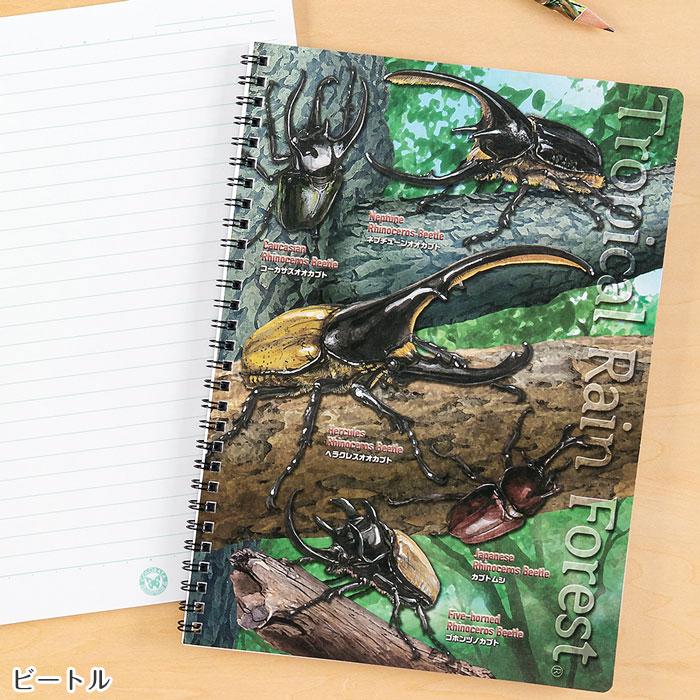 セミ B5 リングノート ビートル カブトムシ クワガタムシ 昆虫 甲虫