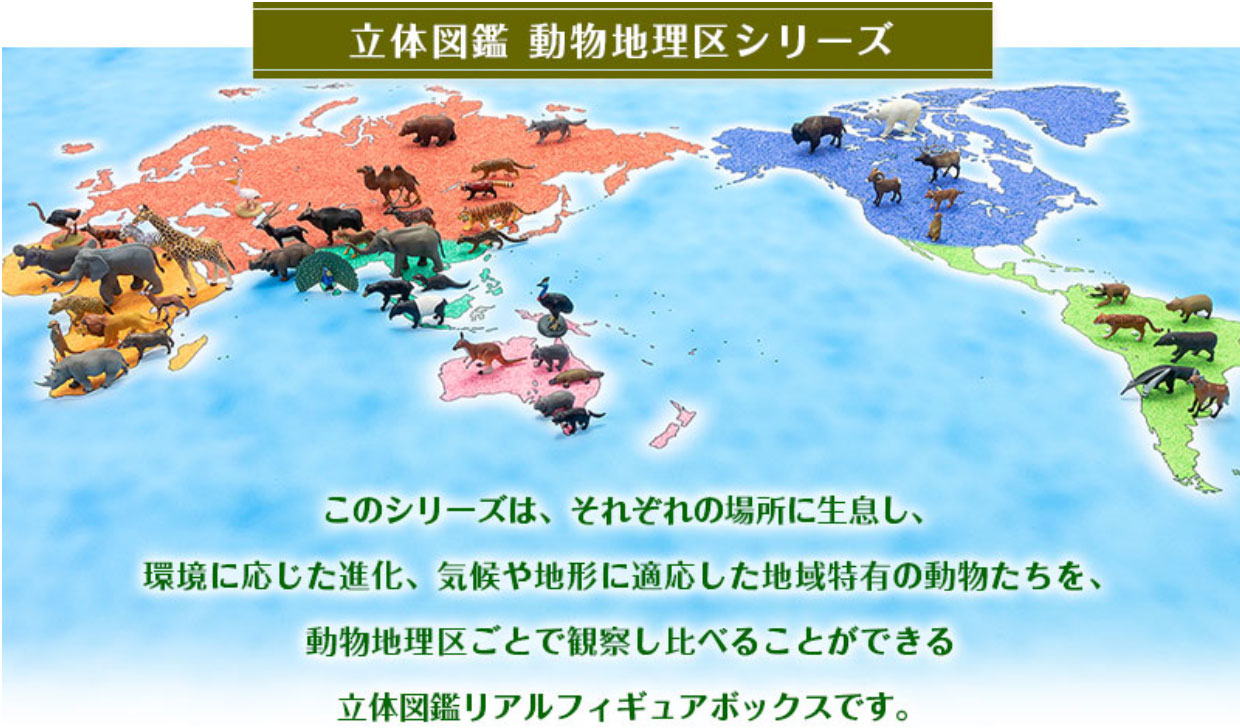 立体図鑑 動物地理区