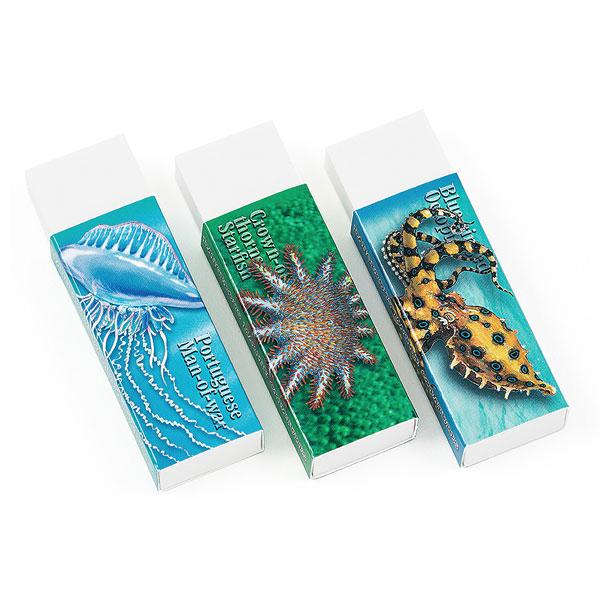 消しゴム3個セット 海の危険生物