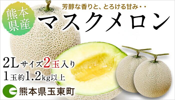 香り高く上品なマスクメロン2Lサイズ2玉入 熊本県玉東町