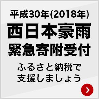 平成30年(2018年)西日本豪雨 緊急寄附受付 ふるさと納税で被害を受けた地域を支援しましょう