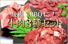 牛肉3種セット