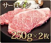 常陸牛サーロインステーキ2枚セット(計500g)