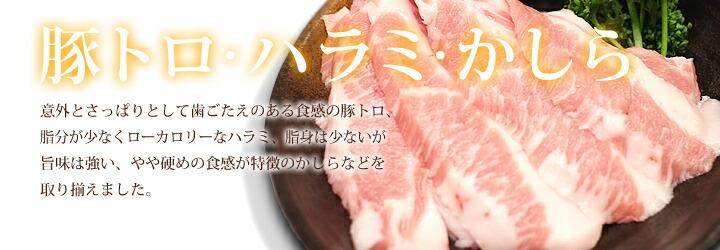 豚 トロ カロリー