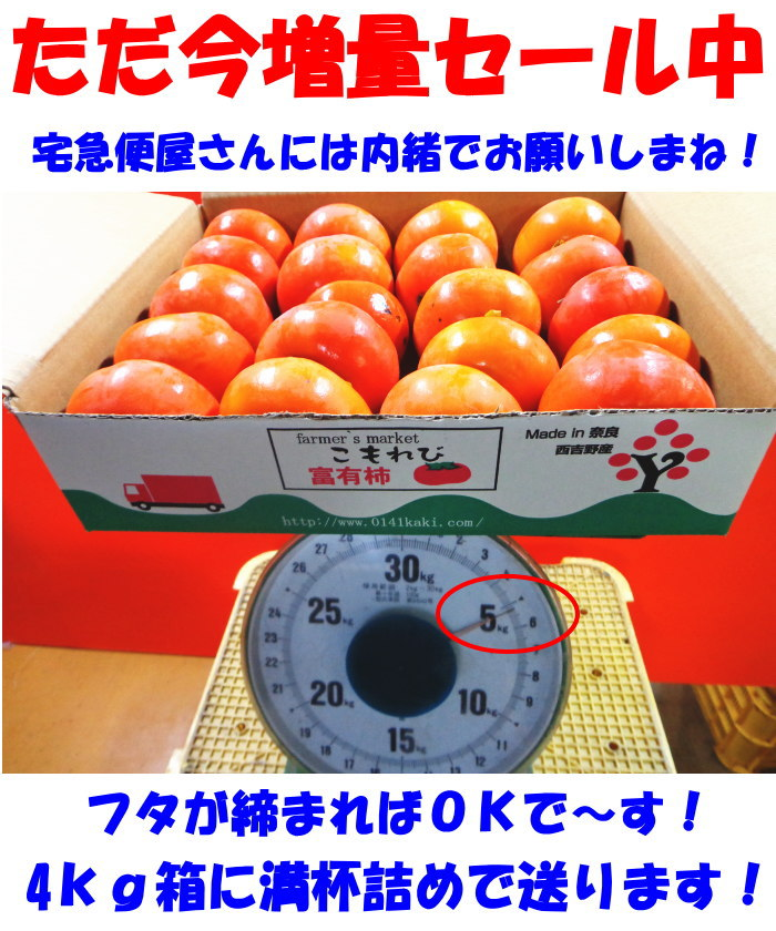 奈良たねなし柿スペック2