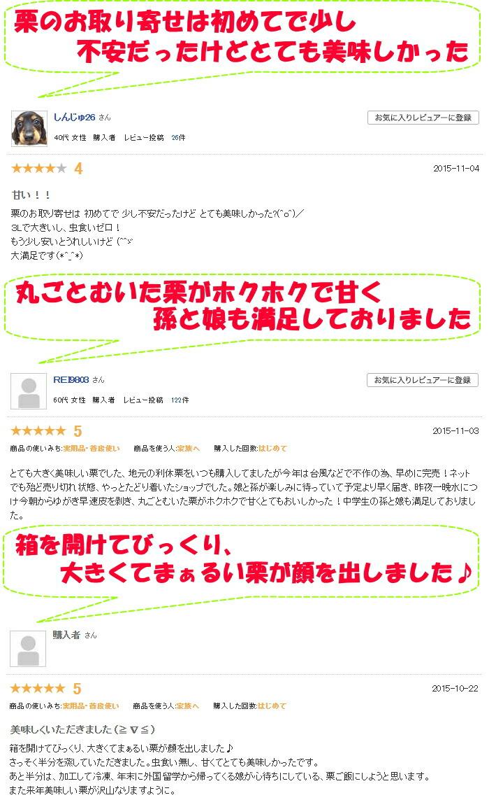 高知氷感熟成栗レビュー3