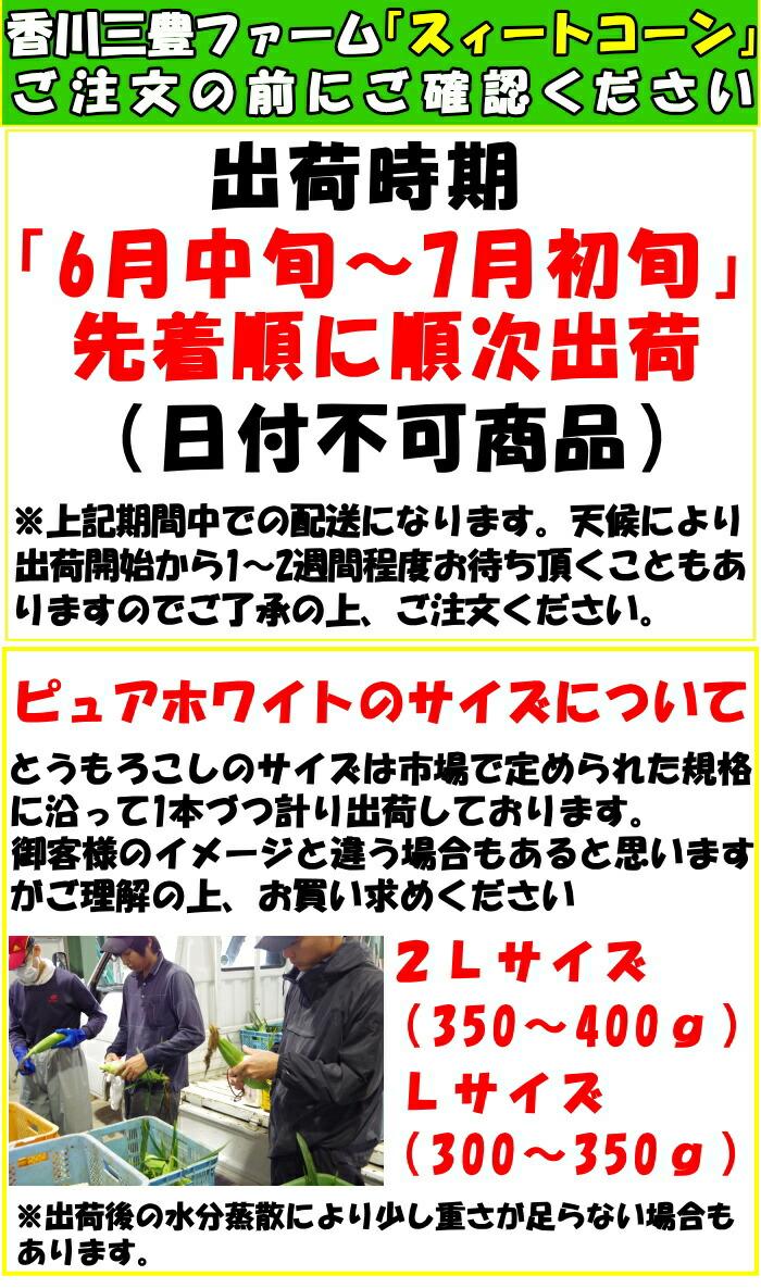 香川とうもろこしピュアホワイト注文前に!