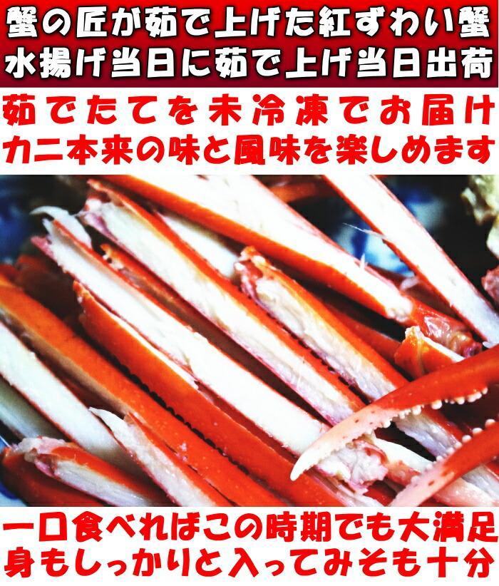 鳥取未冷凍紅ずわい蟹ベネ1
