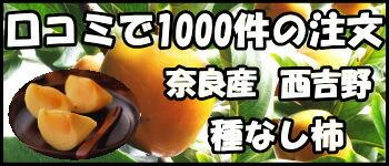 奈良柳澤果樹園種なし柿